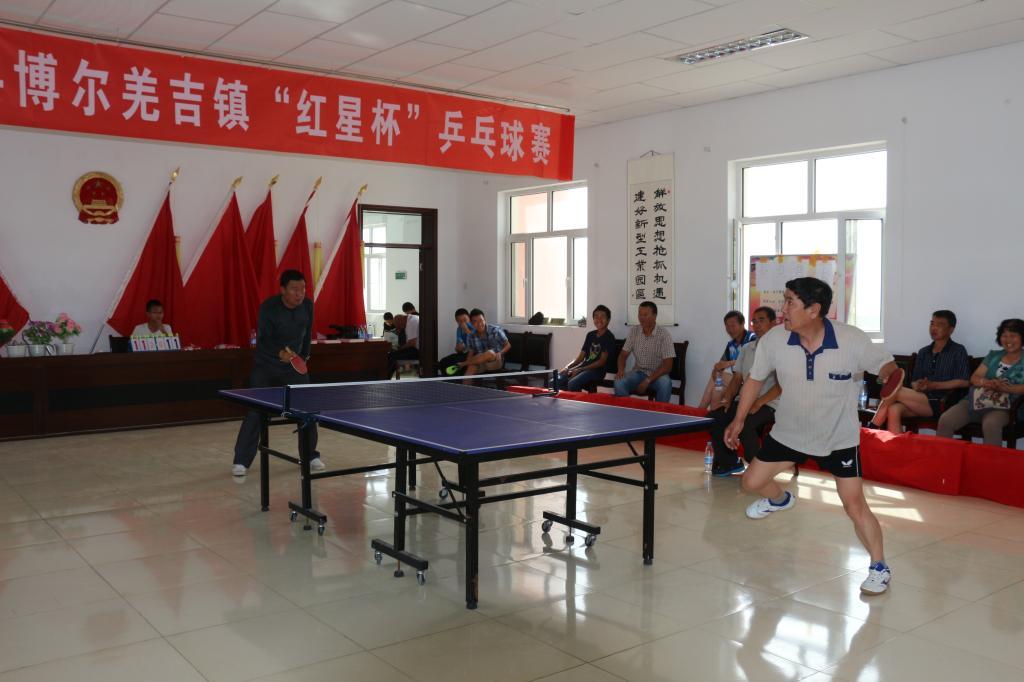 """巴里坤县博尔羌吉镇""""红星杯""""乒乓球赛圆满成功"""